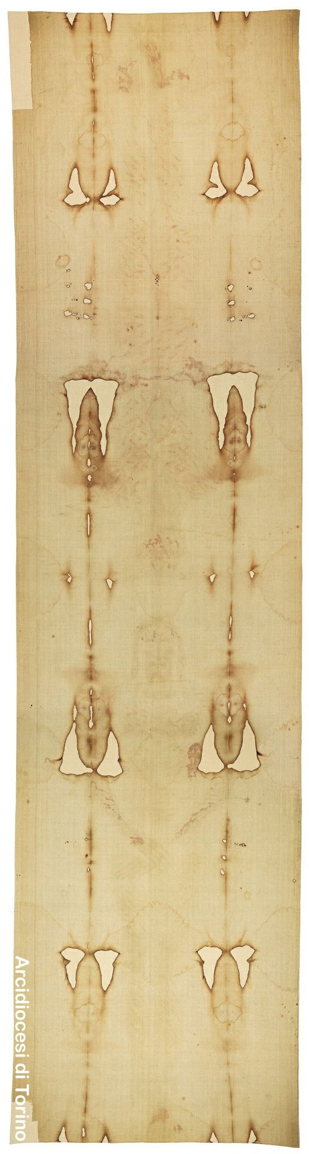 an introduction to the mythology of the shroud of turin Full length negatives of the shroud of turin a poster advertising the 1898 exhibition of the shroud in turin mythology, religion and history.